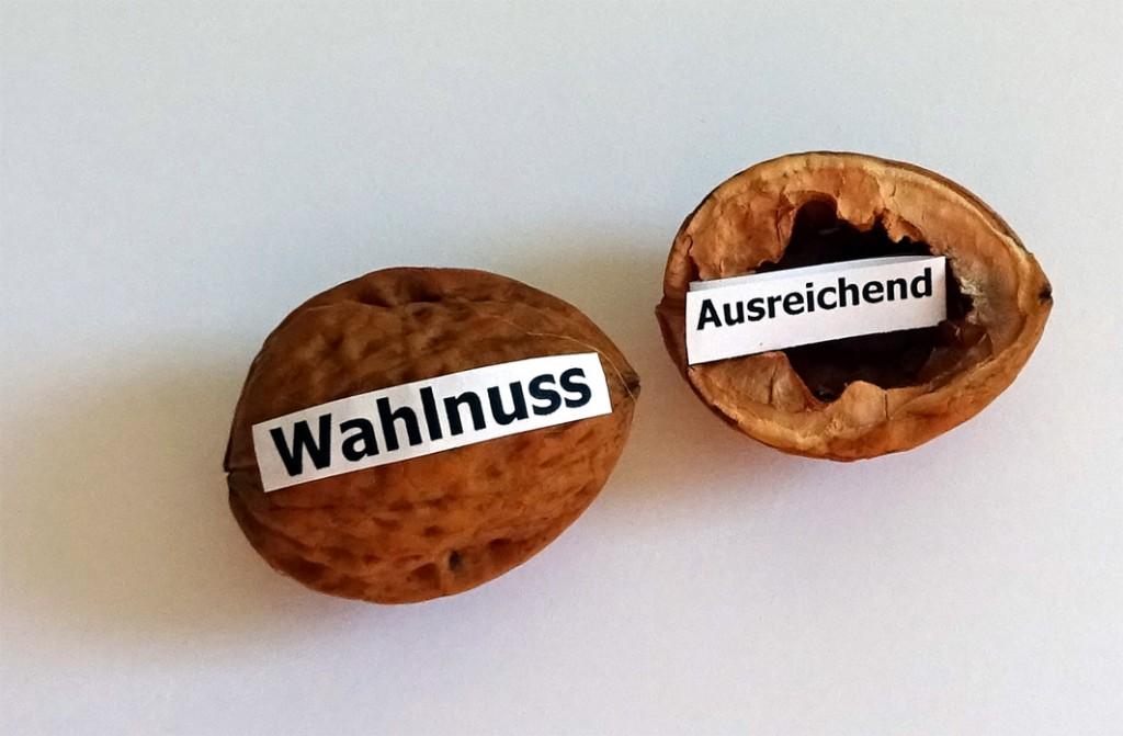 Wahlnuss