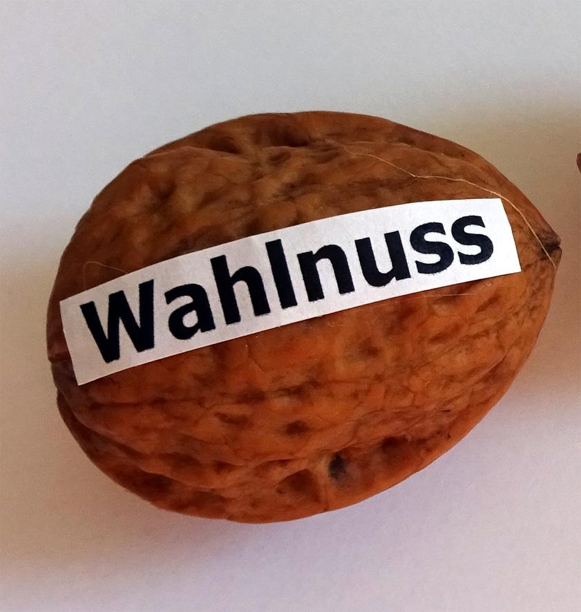 Wa(h)lnuss