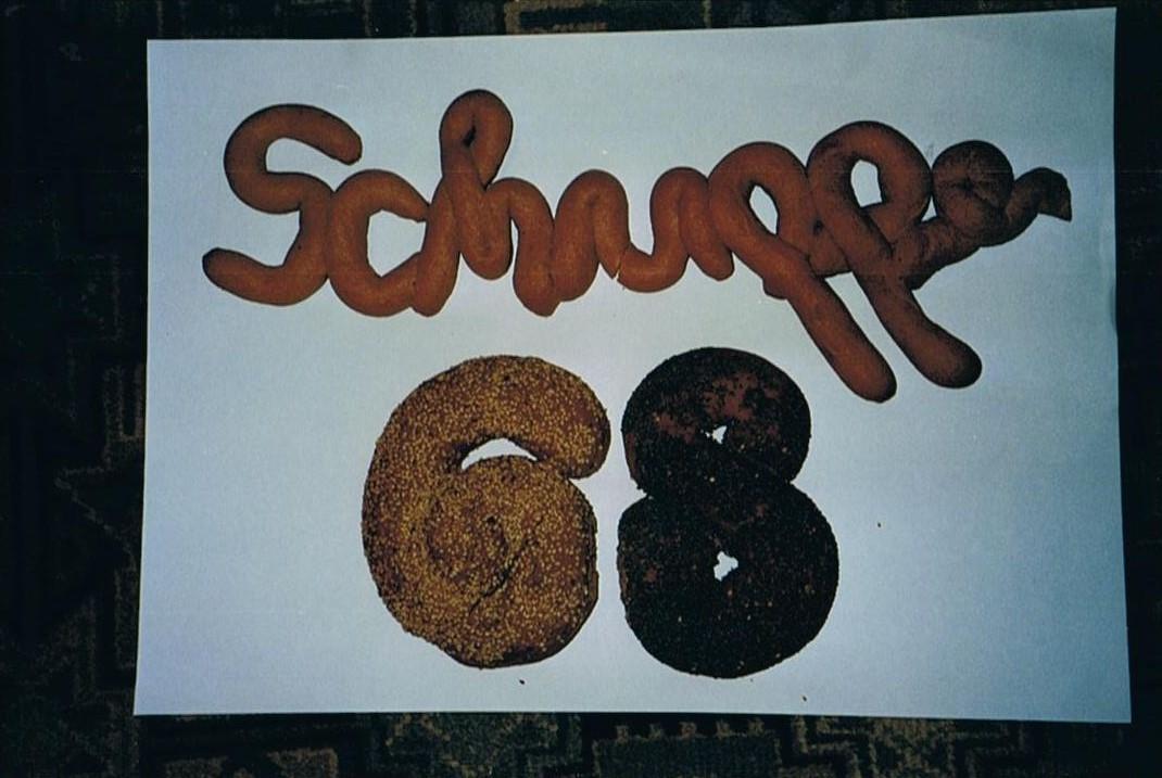 schuppen 68